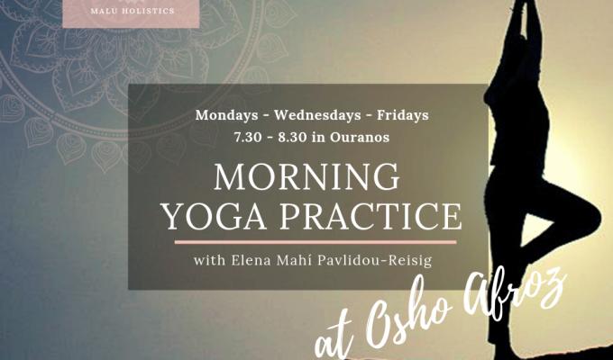 Morning Yoga Practice at OshoAfroz